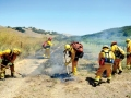 Fire crews work to put out a vegitation fire Friday afternoon that burned a few acres near vineyards on Cienega road.